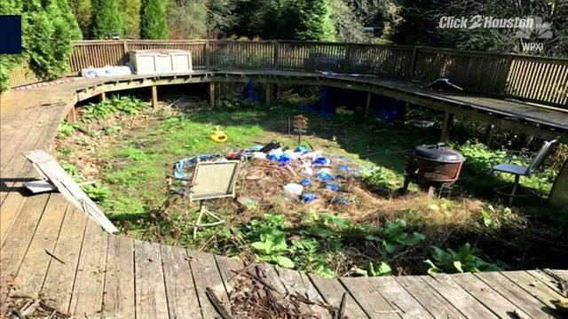 Pa Police Find 100k Worth Of Pot Plants Growing In Backyard