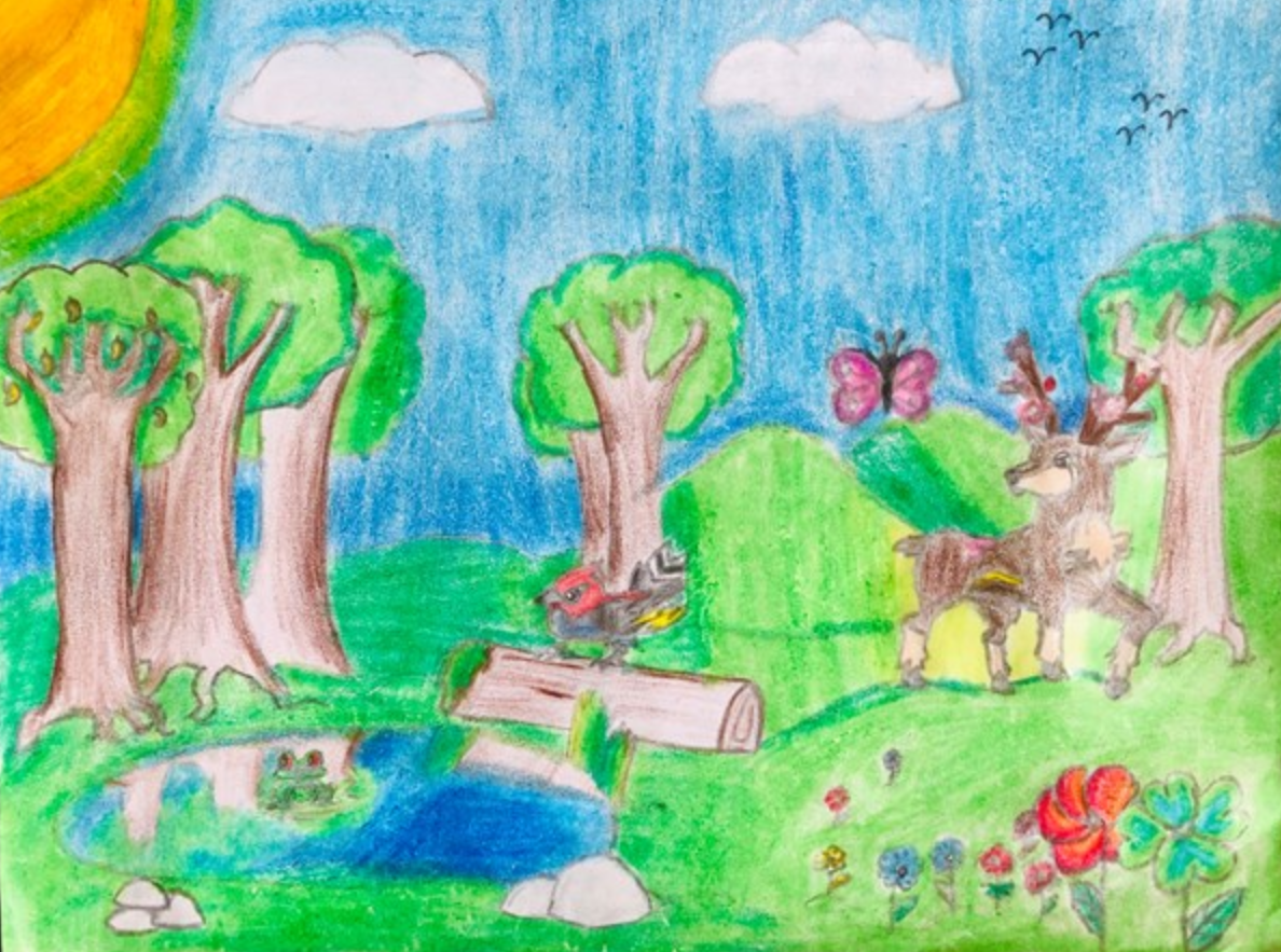 Most Creative Pick Your Favorite Mother Nature Artwork From This Week S Art Assignment